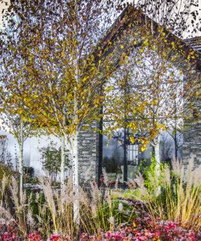 Ogród z artystyczną duszą