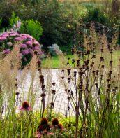 Ogród pełen bylin 11