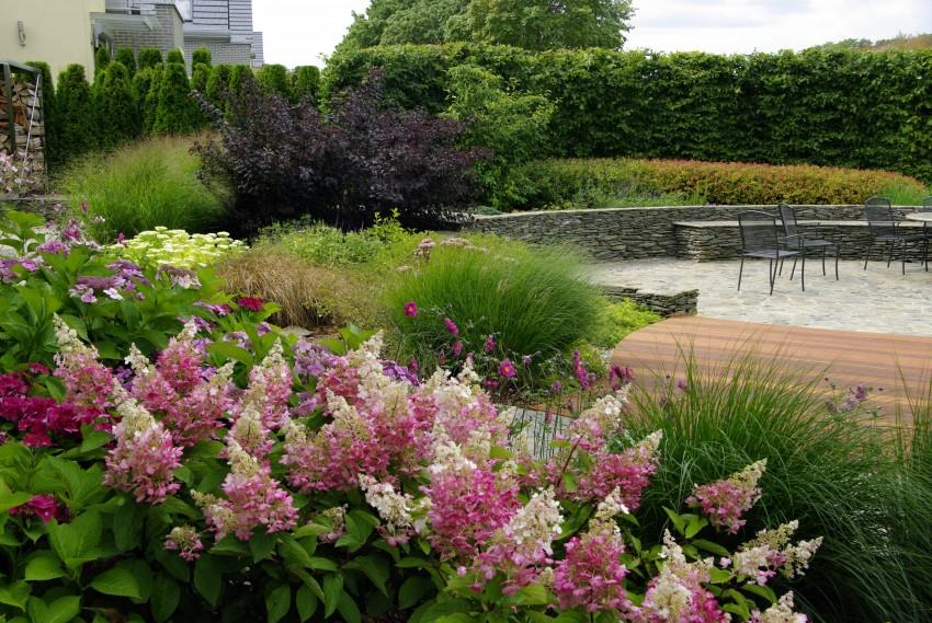 Ogród w kształcie muszli 1