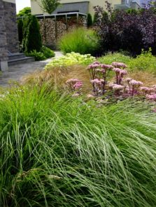 Ogród w kształcie muszli