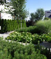 Ogród w kształcie muszli 3