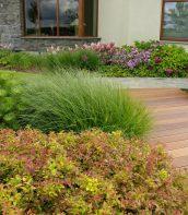 Ogród w kształcie muszli 5