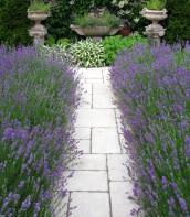 Ogród bardzo romantyczny 8